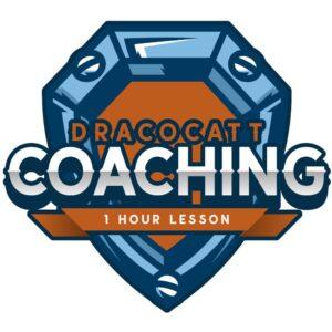 DracoCatt One Hour Lesson
